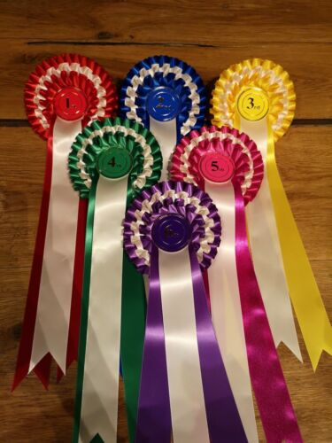 STUBBINS ROSETTES Set of 6 Beautifully Handmade 1st to 6th Place 3 Tier Rosettes