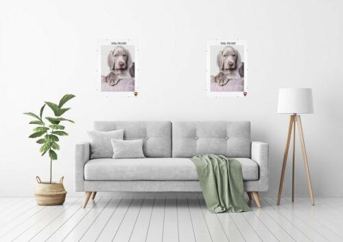 Sin Marco de Clips Soporte para Fotos Poster 30x30-30x120cm