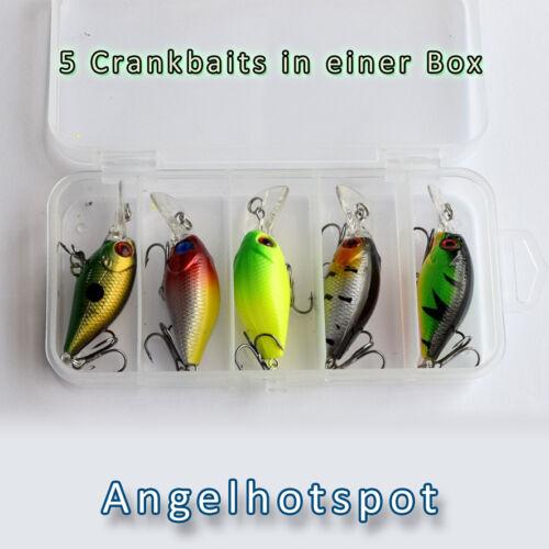 5 Crankbaits in einer Box 5cmMehrfarbig Wobbler mit Köderbox Angelhotspot