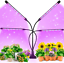 thumbnail 1 - Ezorkas 9 Dimmable Levels Grow Light With 3 Modes Timing Function For Indoor