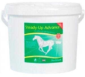 Feedmark-Steady-Up-Advance-Horse-Calmer-Supplement-2-Kg-for-horses