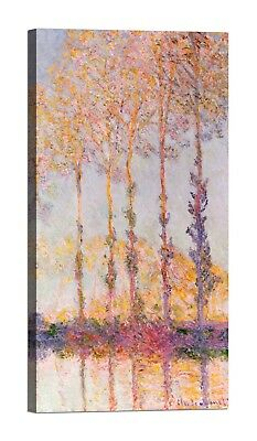 CLAUDE MONET Poplars on the Banks Stampa su tela Canvas effetto dipinto