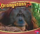 Orangutans by Joanne Mattern (Hardback, 2010)