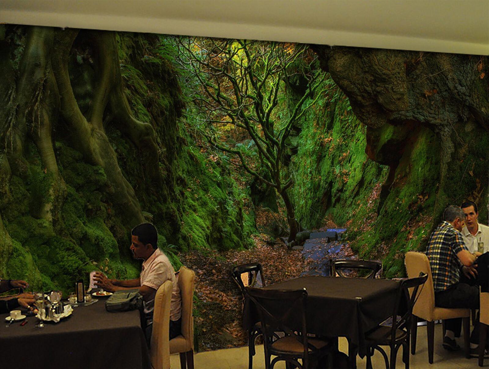 3D Narrow valley 345 Wall Paper Print Wall Decal Deco Indoor Wall Murals