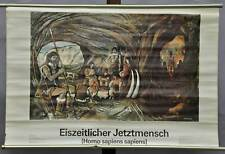 vintage historical decoration wall chart ice age now men Homo sapiens sapiens
