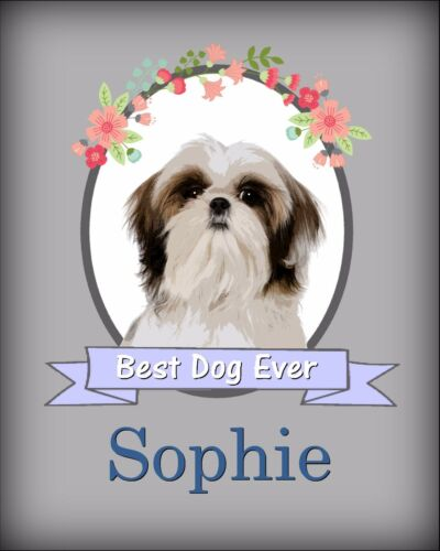 Personalized Shih Tzu Wall Art Dog Photo Print Room Decor YOUR DOG/'S NAME