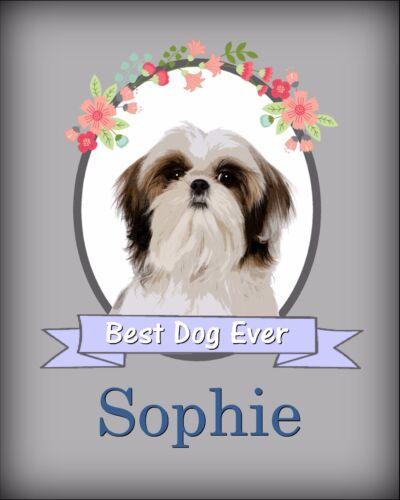 Personalized Shih Tzu Wall Art Dog Photo Print Room Decor YOUR DOG/'S NAME