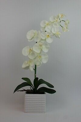 HANDMADE ARTIFICIAL SILK RED MOTH ORCHID WITH LEAVES IN BLACK FOSSIL VASE GIFTS