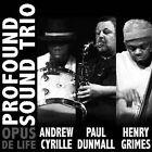 Opus de Life by Profound Sound Trio (CD, Feb-2010, Porter Records)