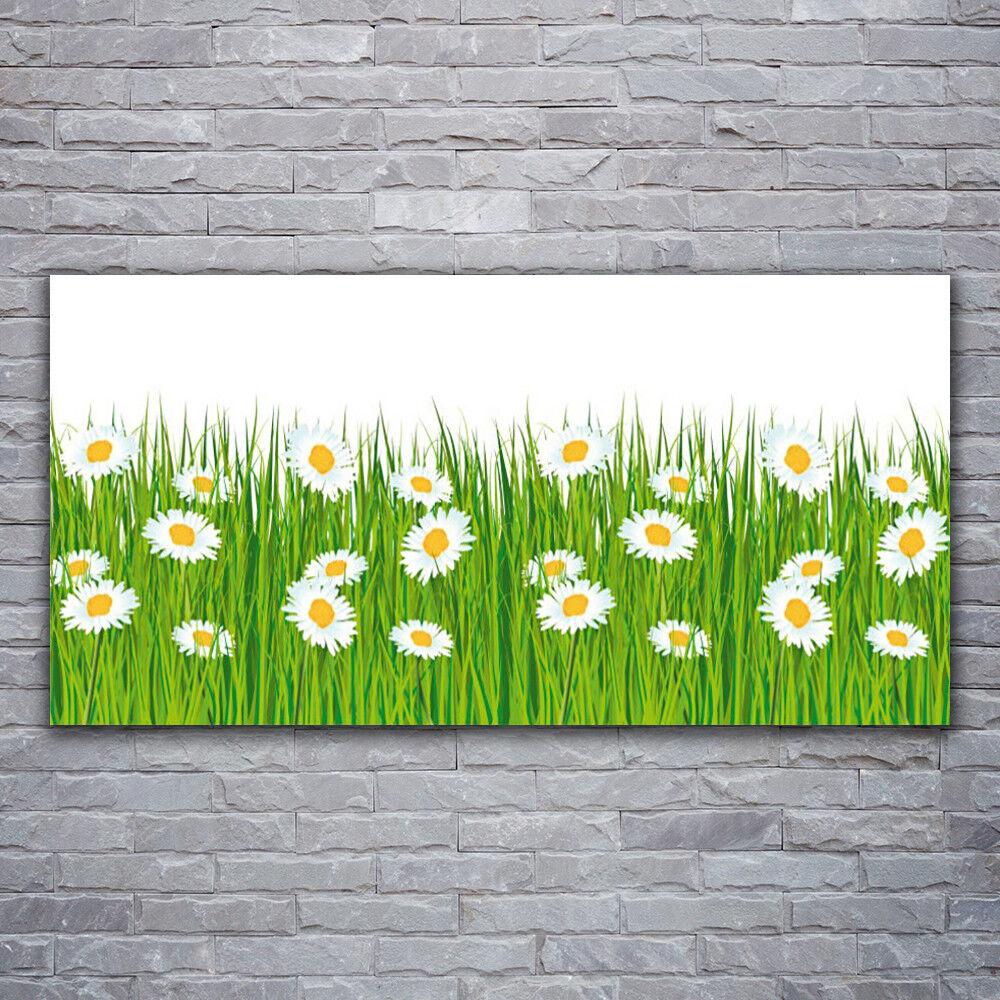 Photo sur toile Tableau Image Impression 120x60 Nature Herbe Marguerite