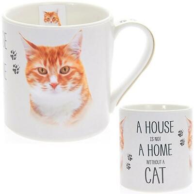 Ginger Cat House /& Home Fine China Mug