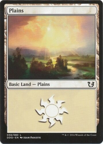 - Blessed vs Cursed 4 x Plains Magic the Gathering MTG Basic Land 038//080