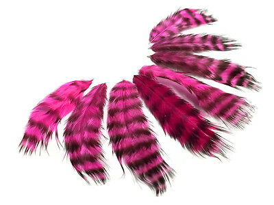 Pink /& Black Rooster Chickabou Fluff Feathers 1 Dozen USA SELLER