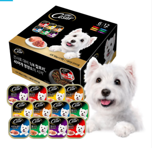 CESAR-Variety-12Packs-Pets-Food-Wet-Dog-Food-For-Adult-Dogs