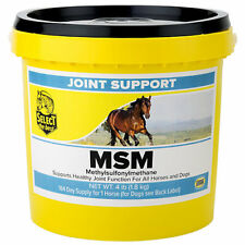 Richdel 784299400405 MSM Powder Joint Support for Horses 4 LB