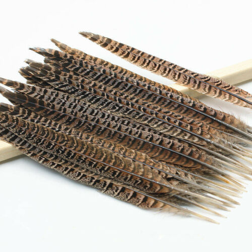 Wholesale natural pheasant tail feathers 4-14 inches//10-35cm 50//100pcs