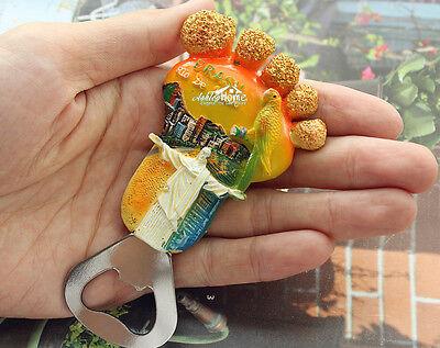 Nymphicus Parrot Brazil Tourism Travel Souvenir 3D Resin Fridge Magnet Craft