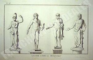 Inquiet Gravure Pallas Apollon Hercule Esculape Xixè Mythologie Thomas Piroli Herculanum