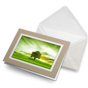 Greetings-Card-Biege-Beautiful-Green-Field-Tree-Nature-Sunset-8264