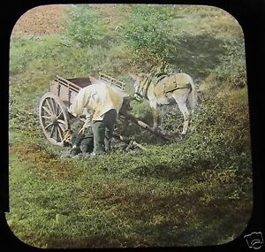 Glass Magic Lantern Slide THATCHED COTTAGE NO26 C1890 VICTORIAN DONKEY amp CART - Cornwall, United Kingdom - Returns accepted Most purchases from business sellers are protected by the Consumer Contract Regulations 2013 which give you the right to cancel the purchase within 14 days after the day you receive the item. Find out more about - Cornwall, United Kingdom