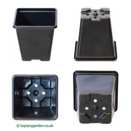 7cm Square Black Plastic Flower / Plant Pots - perfect for plug plants