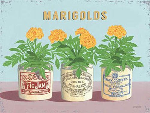 Mini Metal Tin Sign Marigolds Vintage Flower Pots Home Garden Kitchen Bathroom