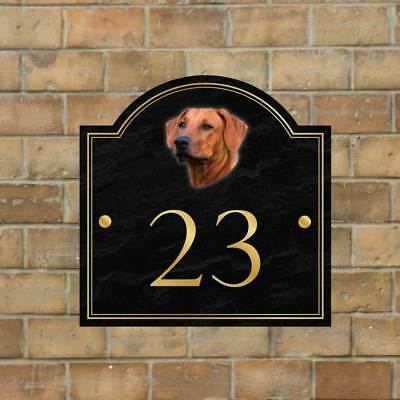 Rhodesian Ridgeback House name sign, House Number, Personalised Dog House  Sign | eBay