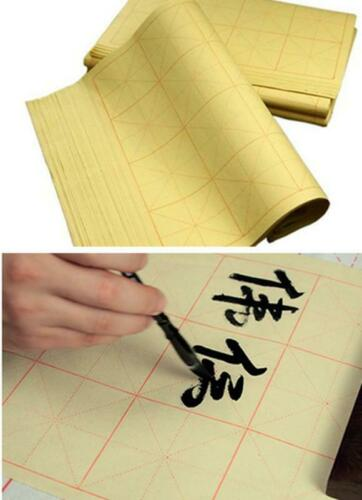 340 pcs Half-raw Bamboo Paper For Chinese Calligraphy Practice 9cm Grid