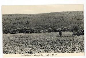 RPPC-Widmer-039-s-Vineyards-Winery-NAPLES-NY-Finger-Lakes-Real-Photo-Postcard