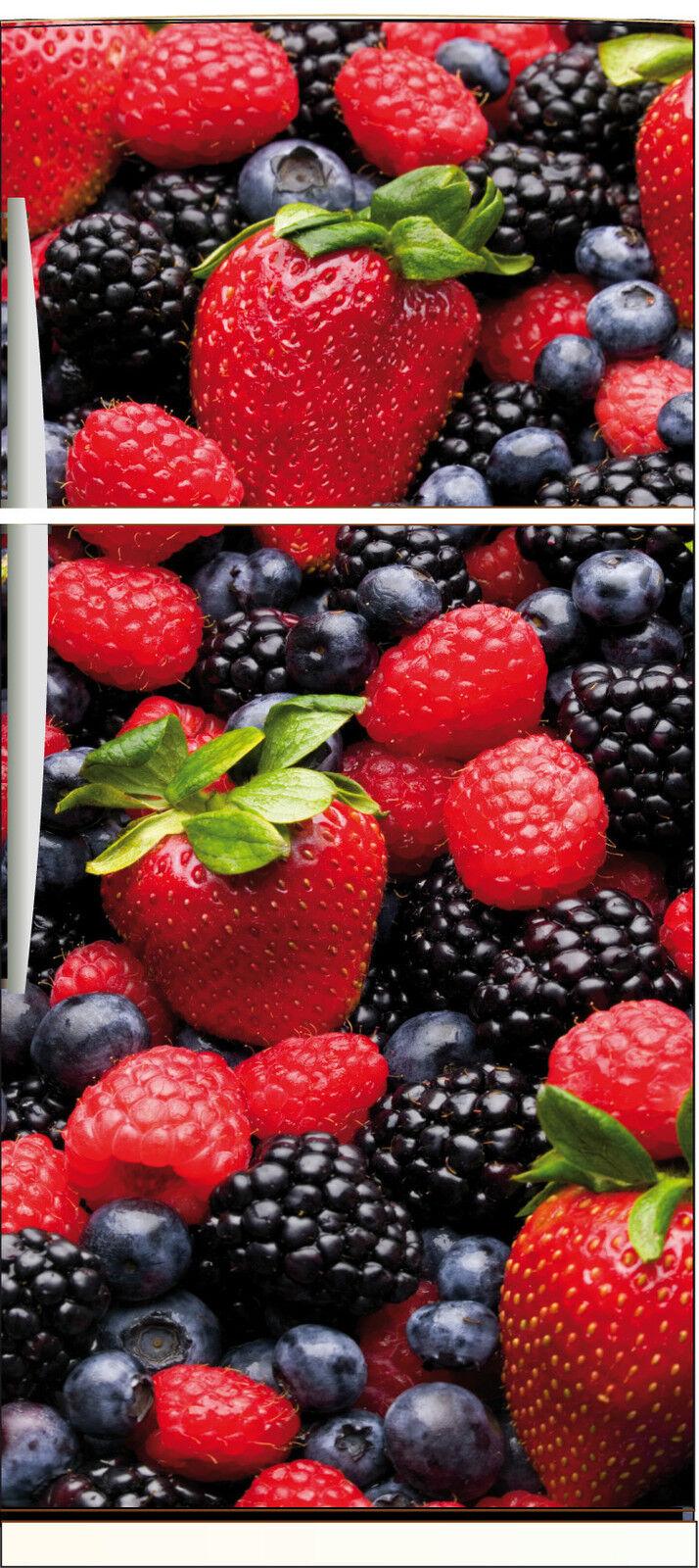 Aufkleber Kühlschrank Haushaltsgeräte Dekor Küche Früchte 70x170cm Ref 535