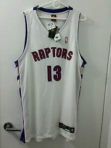 44e5db4af53 Image is loading Authentic-Jerome-Williams-Toronto-Raptors-Autographed-Nike- Jersey-