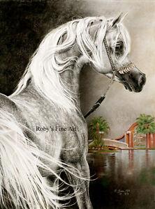 034-Arabian-Stallion-034-Horse-Art-Print-5-034-x-7-034-Giclee-Equine-Image-By-Roby-Baer-PSA