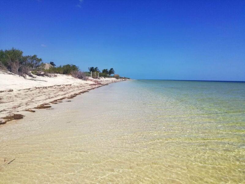 Venta Departamentos de Lujo Frente al Mar Chicxulub Yucatan.