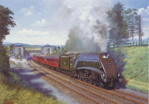 60019 Bittern A4 Class LNER BR Railway Engine Steam Train Loco Birthday Card