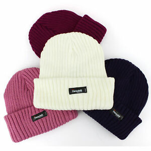 0f6427b9803 Image is loading Thinsulate-Chunky-Lined-Knitted-Knit-Beanie-Hat-Warm-