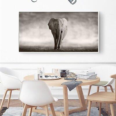 Abstract Art Lion Black White Paint Silk Canvas Poster Wall Decor Unframed A517