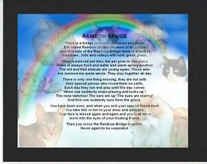 Personalised Mounted Poem Print Rainbow Bridge Poem Cats Design
