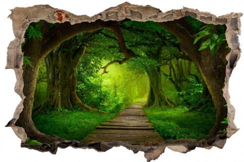 Weg im Wald Märchenwelt Wandtattoo Wandsticker Wandaufkleber D2702