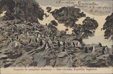SOUTH OARKNEYS  ROQUERIA DE PINGUINOS ANTARTICOS 1907 ED. ROSAUER 1251