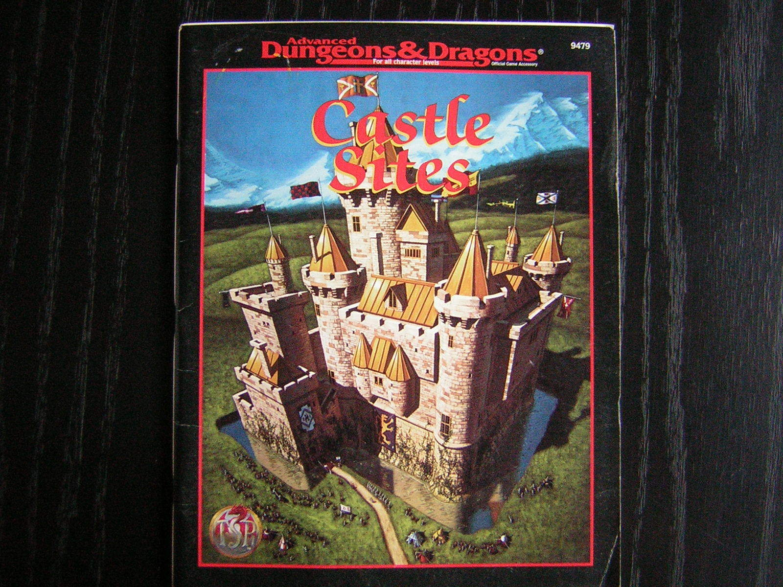 AD&D Dungeons and Dragons 2E 2nd Edition 9479 - Castle Sites, TSR 1995