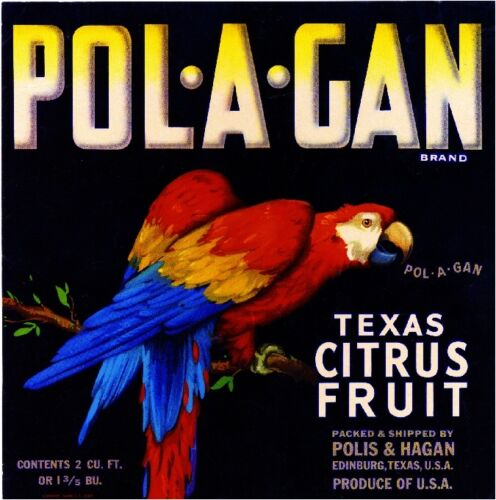Edinburg Texas Pol-A-Gan Parrot Macaw Orange Citrus Fruit Crate Label Art Print