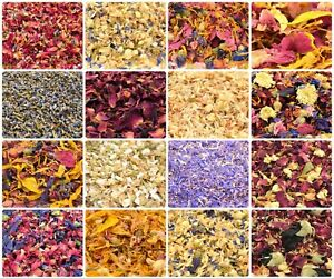 Edible-Dried-Flowers-amp-Petals-61-Types-Tea-Cooking-Coctail-Garnishes-Craft