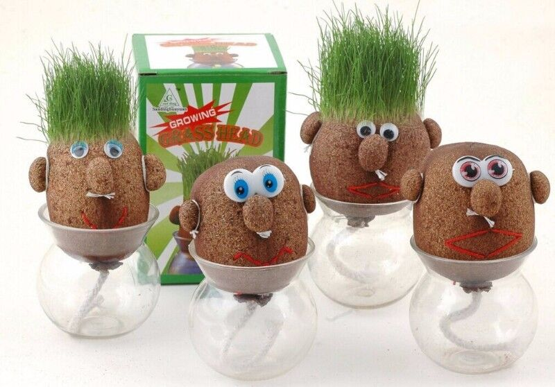 Magic Grass Head Hair Absorbent Flower Pot Planter Herb Plant Doll Pot