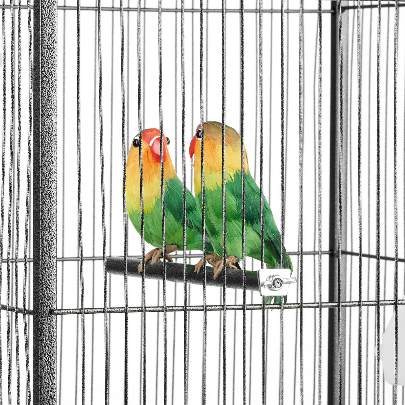 Pet Supplies Small Bird Cage White Steady Pet Ting Daffodil Bird Cage For Finch Canary Budgie