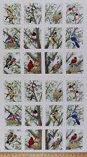 "23.5"" X 44"" Panel Beautiful Birds Bird Birdwatching Cotton Fabric Panel D505.30"