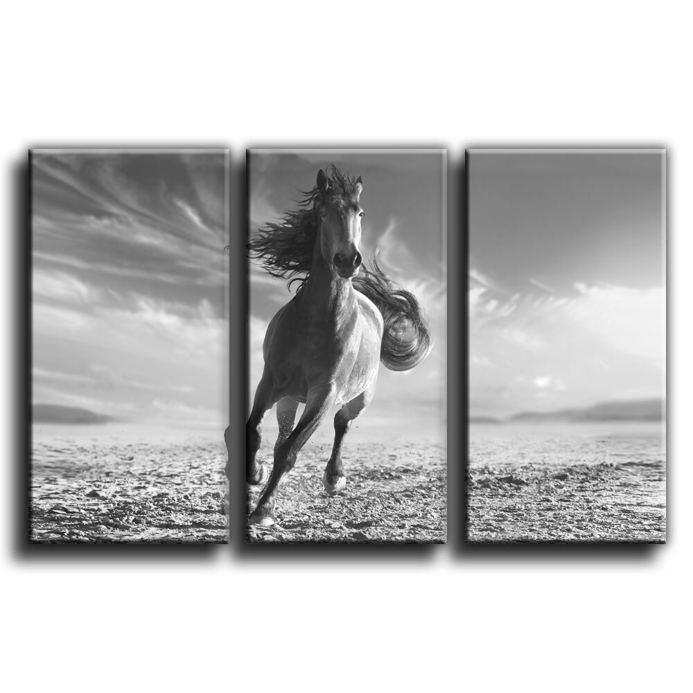 Cheval sur toile imprimer encadrée wall art photo treble photo art 9 galerie grade 1247fa