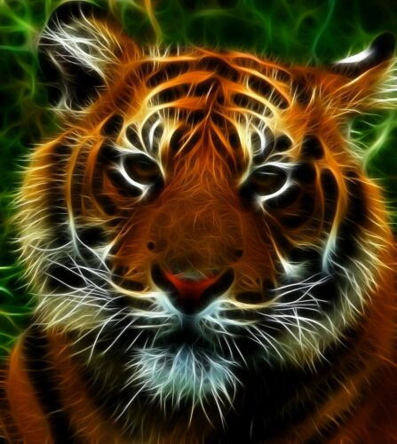 tiger wild cat fractal cross stitch chart also available as A4 glossy print