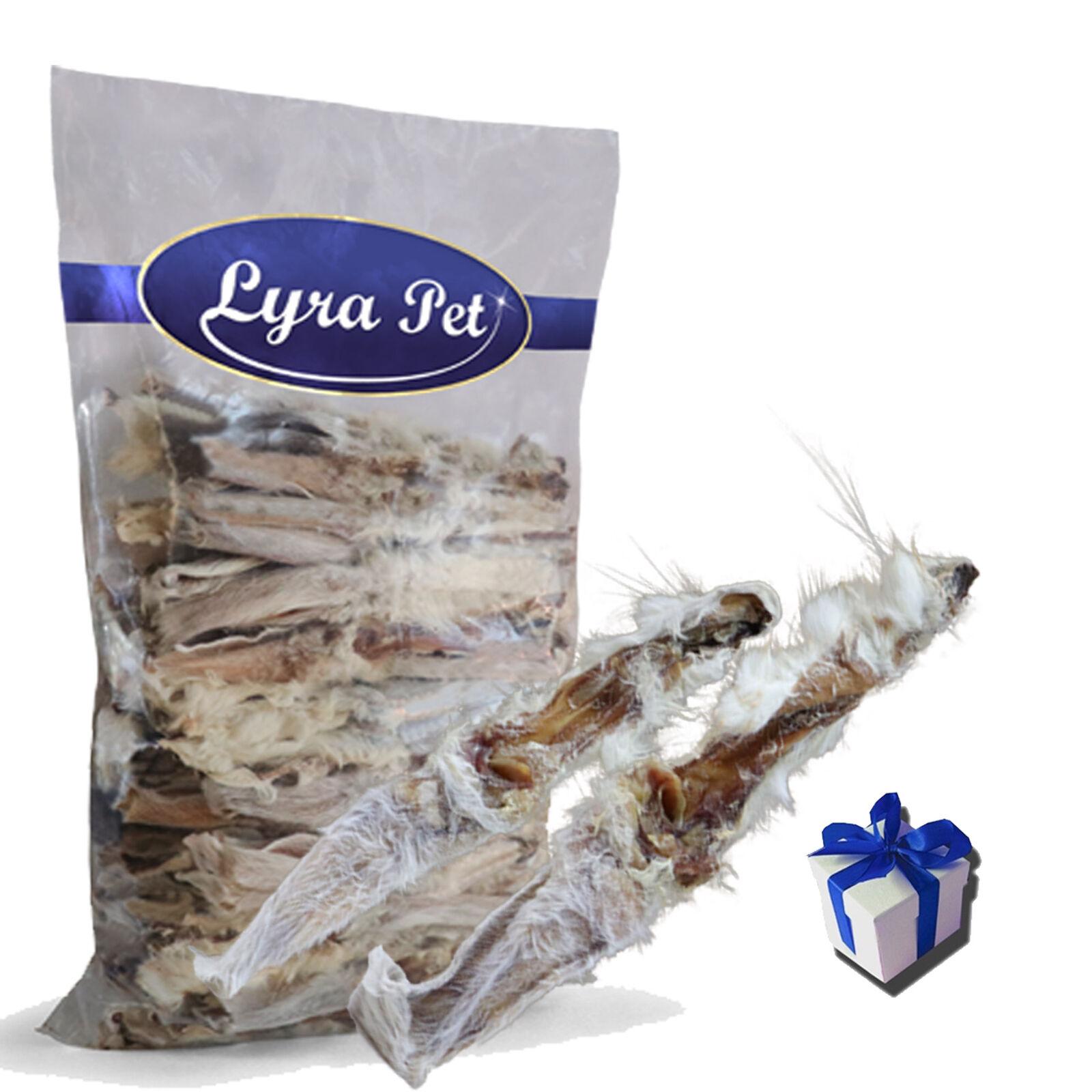 15 kg orec e conigli con pelliccia 15000 G LYRA PET ® Coniglio orec o cibo per cani  regalo