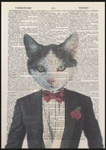 Tabby Cat Lady Vintage Dictionary Page Wall Art Picture Print Animal in Clothes
