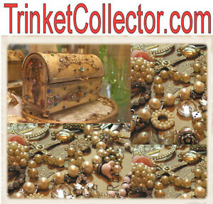 Trinket-Collector-com-Junk-Drawer-Auctions-Trinkets-Things-Domain-Name-4-Sale